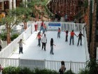 Synthetic ice rink with Super-Glide synthetic ice for public ice skating